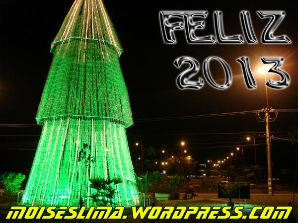 feLIZ_2013_FINAL